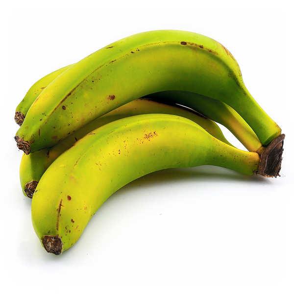 Organic Banana from Canary Island