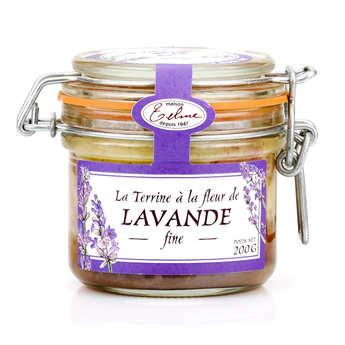 Maison Telme - Pork Terrine with Wild Lavender Flower