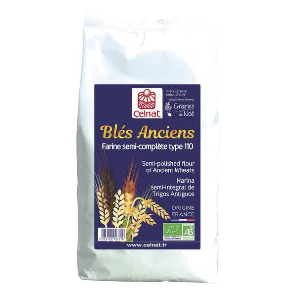 Farine semi-complète de blé ancien bio type 110