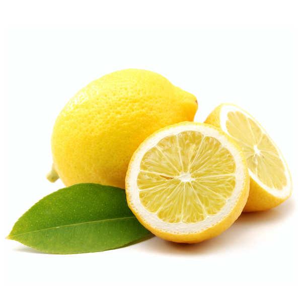 Organic Lemon Priomofiore from Sicily