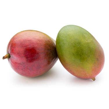 Mangues variété Kent bio