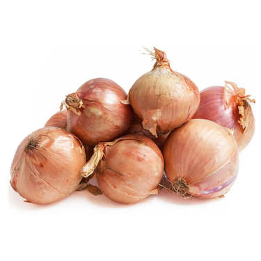 Organic Pink Onions from Roscoff