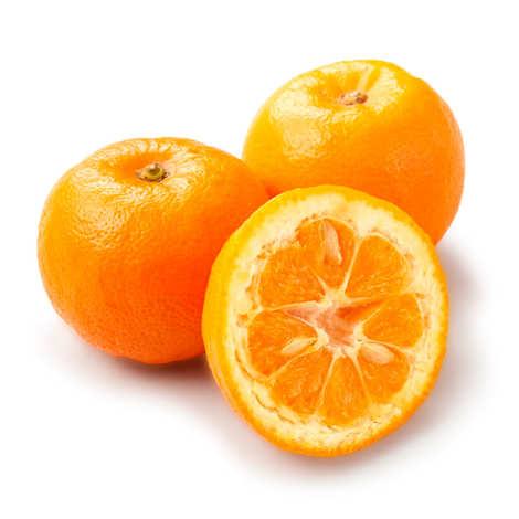 - Organic Bitter Oranges