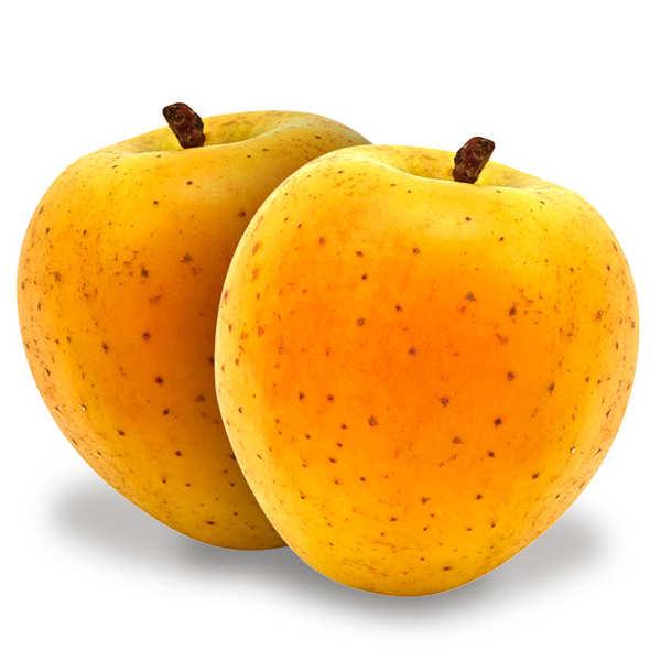 Pommes delis d'or de France bio