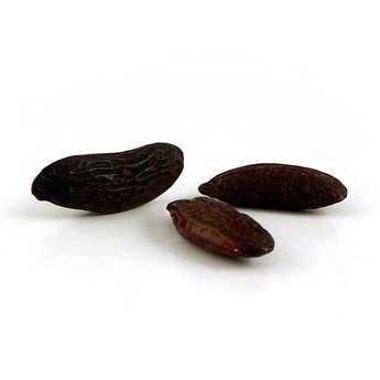 - Tonka bean