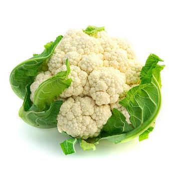 - Organic Cauliflower from France