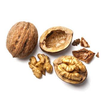 - Organic Walnut from Grenoble