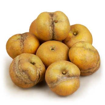 - Pommes patte de loup de France bio