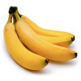 - Organic and Fair Trade Banana