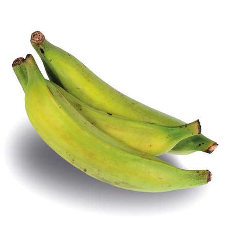 - Banana variety 'Plantain'