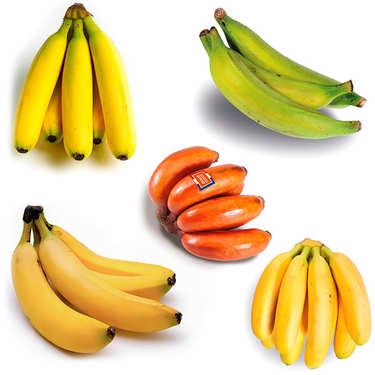 Assortiment découverte de bananes