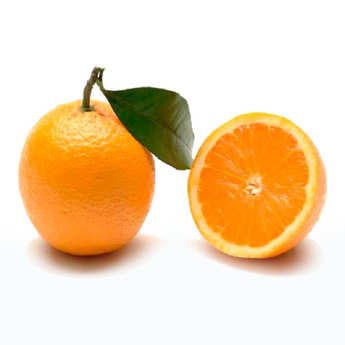 - Organic Oranges from Sicily