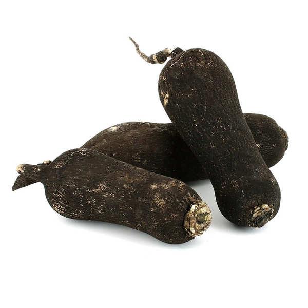 Organic Black Radish from France