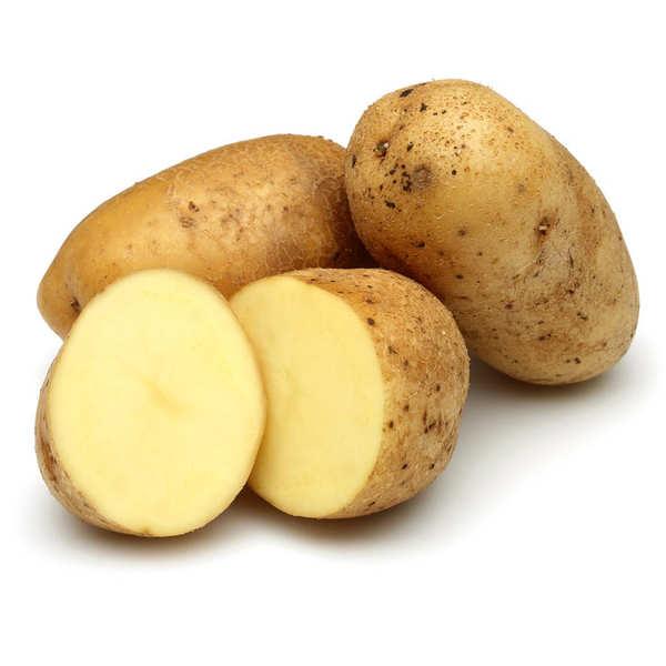 Pomme de terre bio - variété Spunta