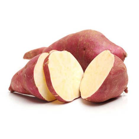 """- Organic 'Murasaki"""" White Sweet Potato"""