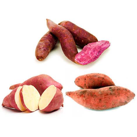 - Trio de patates douces bio