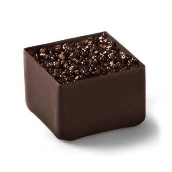 Michel Cluizel - Pot de muguet en chocolat
