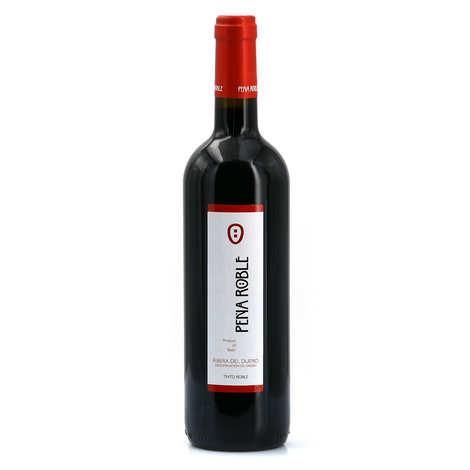 Bodegas Resalte de Penafiel - Pena Roble joven DO Ribera del Duero - Vin rouge d'Espagne