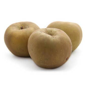 - Pommes reinette grise du Canada de France bio