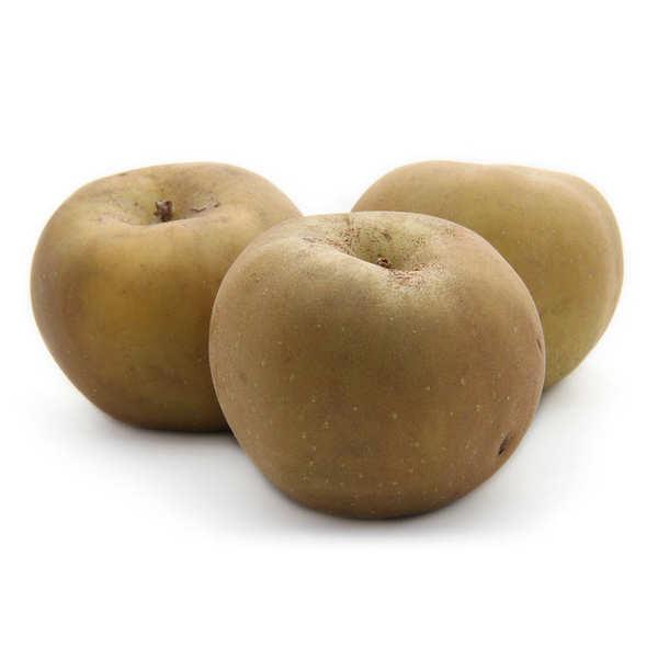 Pommes reinette grise du Canada de France bio