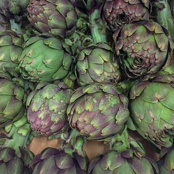 - Organic Purple Artichoke from France
