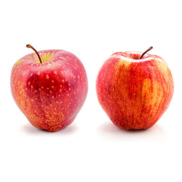Organic Apples 'Cameo®' from Frnace