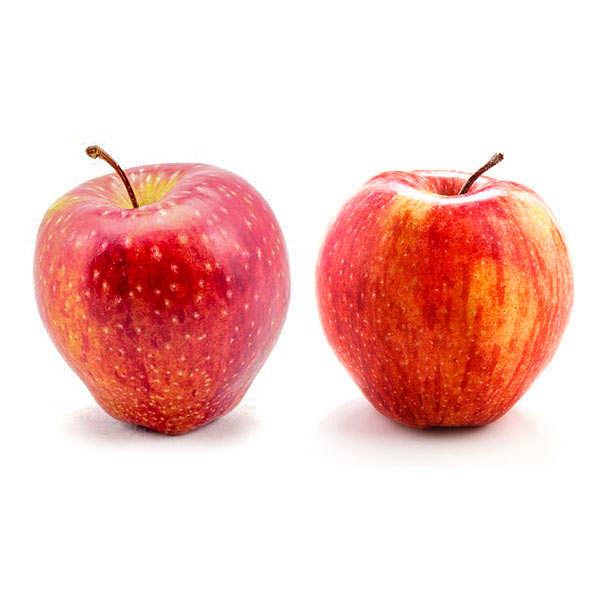 Pommes Cameo® de France bio