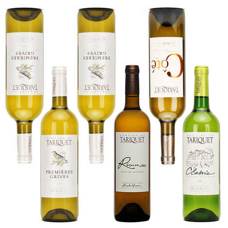 Domaine Tariquet - Tariquet White Wines Discovery Offer