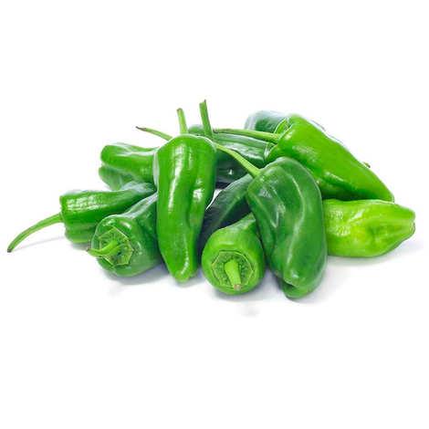 - Organic Pimientos (Sweet Pepper) Padron