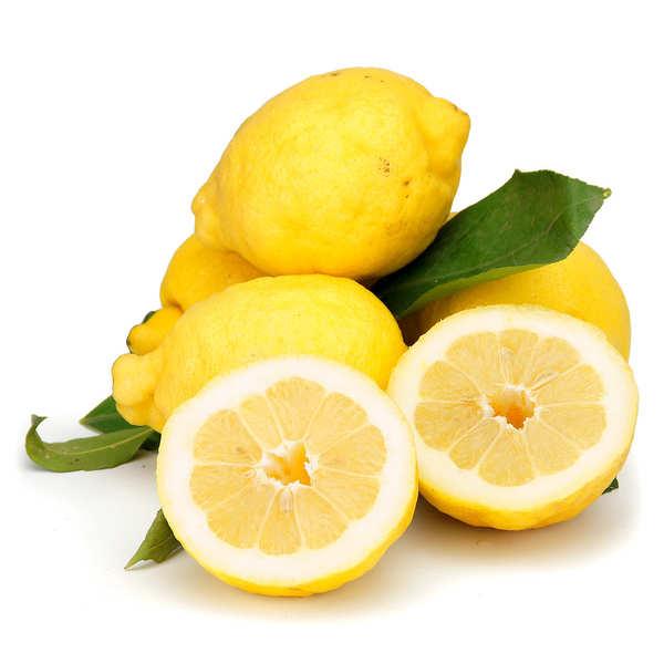 Citrons frais de la côte d'Amalfi IGP d'Italie bio