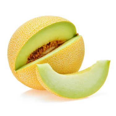 Organic 'Galia' Melon