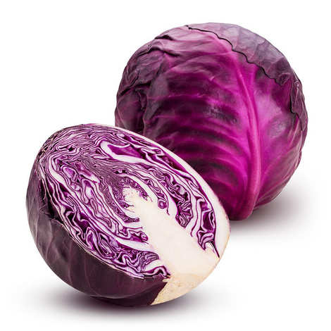 Organic Red Cabbage From France