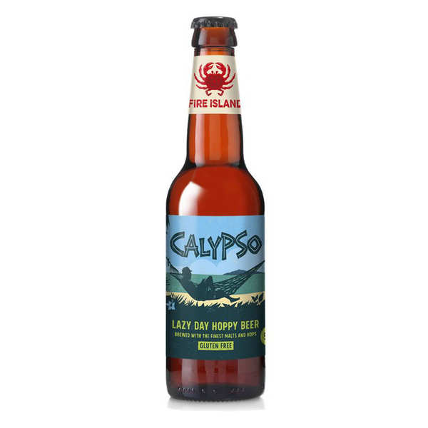 Wild Mountain - Organic and Gluten Free Amber Beer from Wales  5.1%