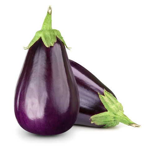 - Organic Eggplant