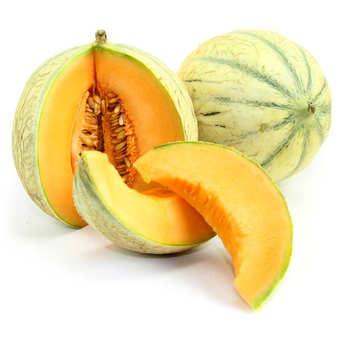 BienManger.com - Organic 'Charentais' Melon from France
