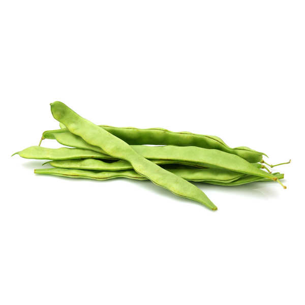 Organic Runner Bean from France