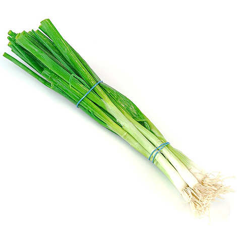- Spring Onion from France
