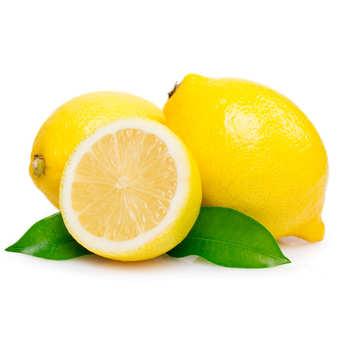 - Organic Lemon from Sicily
