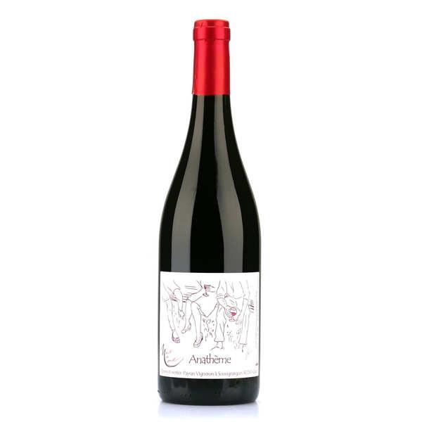 Anathème rouge - vin rouge du languedoc sans sulfite ajouté - bouteille 75cl - 2017