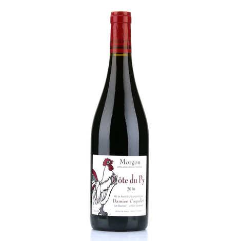 Domaine Damien Coquelet - Morgon Côte du Py AOC - vin rouge du Beaujolais