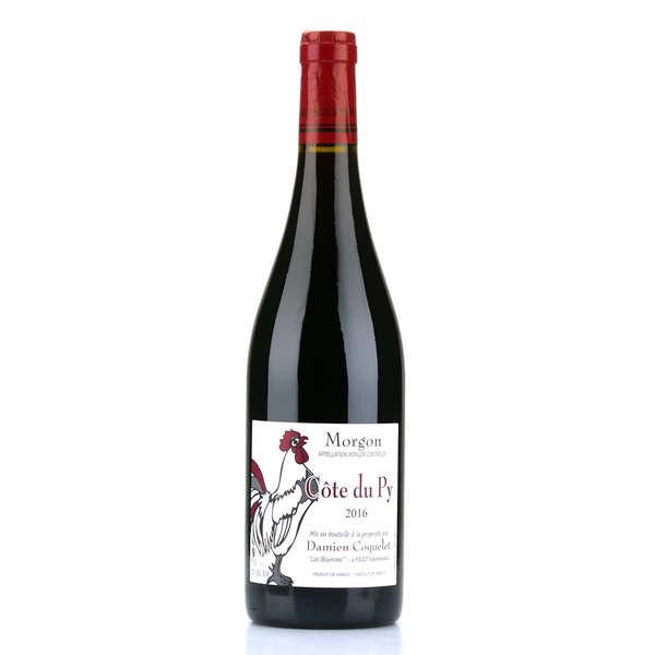 Morgon côte du py aoc - vin rouge du beaujolais - bouteille 75cl - 2016
