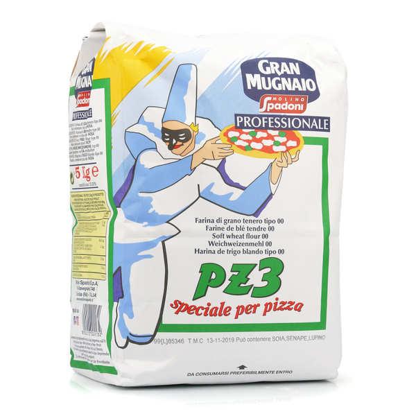 Farine italienne PZ3 (levage 8-10h) pour pizza