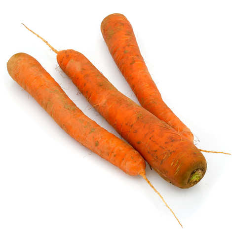 - Unwashed Organic Carrot