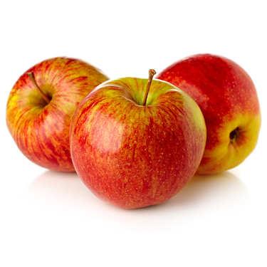 Organic Apples 'Elstar' from Frnace