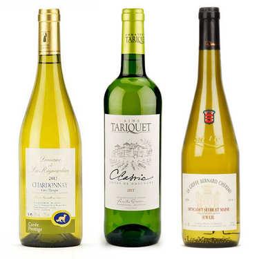Assortiment de 3 vins blancs secs