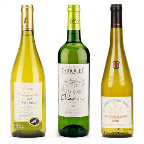 - 3 Dry White Wines Discovery Offer
