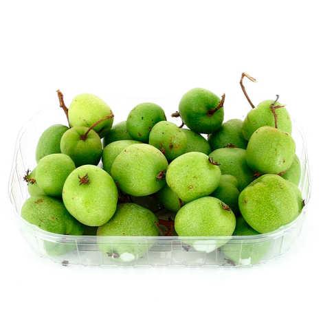 - Organic Green Kiwaï from France
