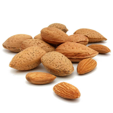 - Almond from Spain in Shell