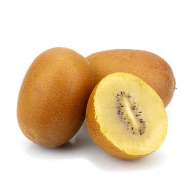 Organic Yellow Kiwi