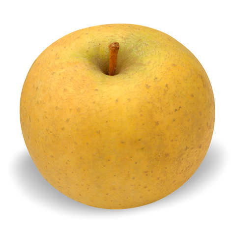 - Organic Apples 'Chanteclerc' from France